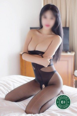 Book a meeting with Cherry in Limerick City today