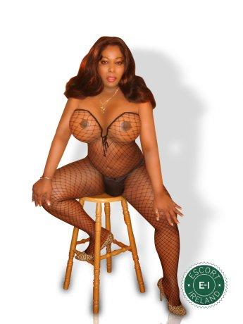 TS Alexandra  is a sexy Guyanese escort in Limerick City, Limerick