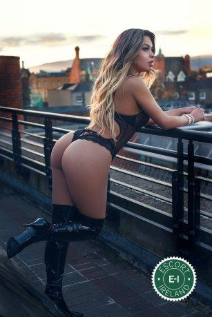 Bruna Rios TS is a super sexy Brazilian escort in Dublin 1, Dublin