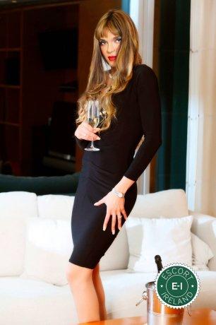 Gorgeous TV Arielle is a sexy Brazilian dominatrix in Belfast City Centre, Belfast