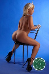 Selena is a top quality Russian Escort in Galway City