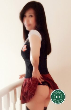 Angela is a very popular Korean escort in Dublin 6, Dublin