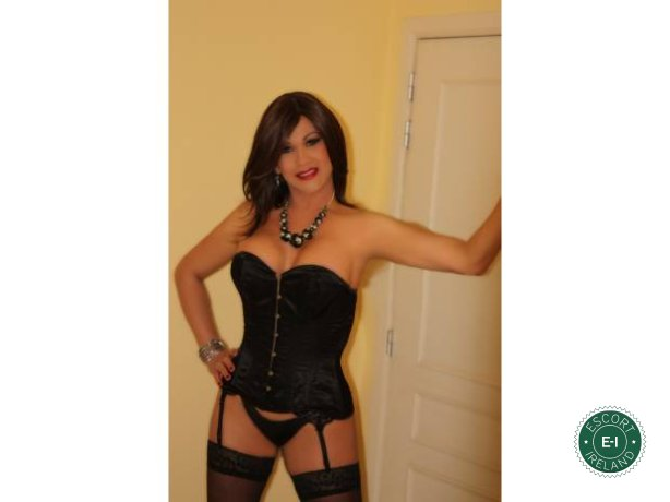 Vanessa TS is a hot and horny Colombian escort from Dublin 6 West, Dublin