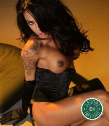 TS Sara  is a hot and horny South American Escort from Dublin 2