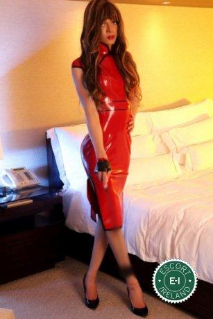 TV Arielle is a super sexy Brazilian escort in Belfast City Centre, Belfast