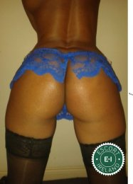 New Sensual Massage is one of the best massage providers in Drogheda. Book a meeting today