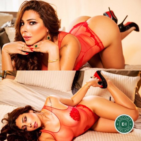 TS Pamela Nayara is a high class Venezuelan escort Dublin 24, Dublin