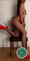 Meet the beautiful Amber  in Dublin 7  with just one phone call
