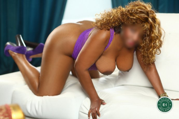 Meet Catarina in Cork City right now!