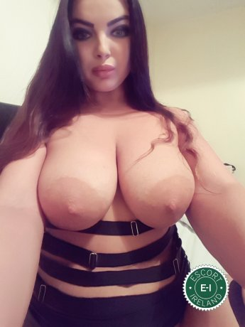 Book a meeting with Miki in Dublin 1 today