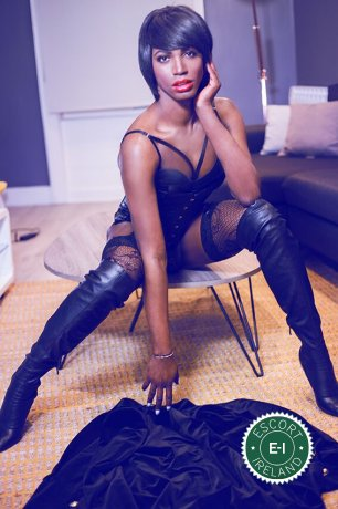 Black Panther Michelley TV is a super sexy Puerto Rican Escort in Dublin 2