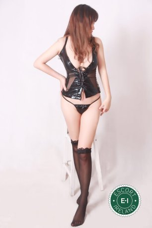 Book a meeting with Little Apple in Dublin 7 today