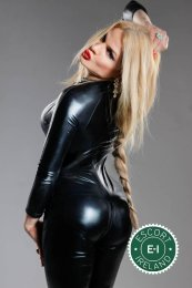 Meet the beautiful Jenny Foxx TS in Newry  with just one phone call