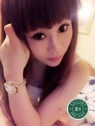 Meet the beautiful Lily Baby in Dublin 1  with just one phone call
