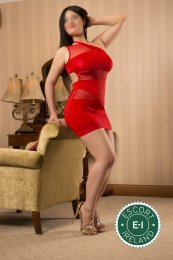 Book a meeting with Curvy Nina in Dublin 6 today