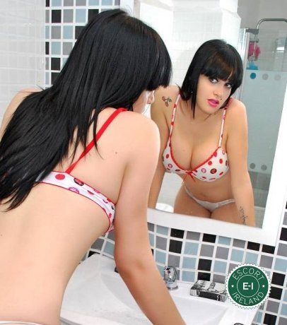 Meet the beautiful TS Maria in Dublin 7  with just one phone call