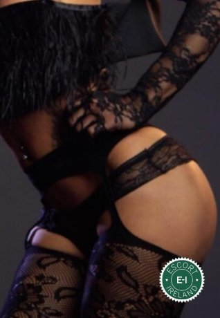 Jessika Fire TS is a hot and horny South American Escort from Dublin 1